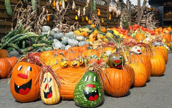 Cute arrangement of lots of pumpkins Stock photo © Smileus