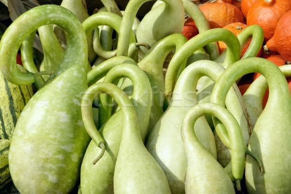 Ornate bright green pumpkins  Stock photo © Smileus