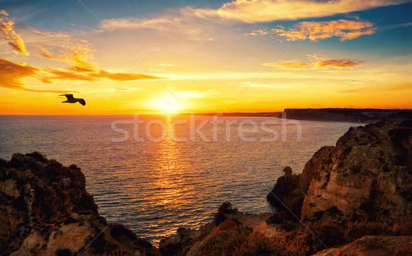 спокойный закат сцена океана декораций солнечный свет Сток-фото © Smileus