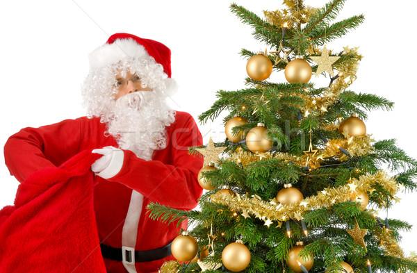 Дед Мороз сумку рождественская елка золото украшения Сток-фото © Smileus