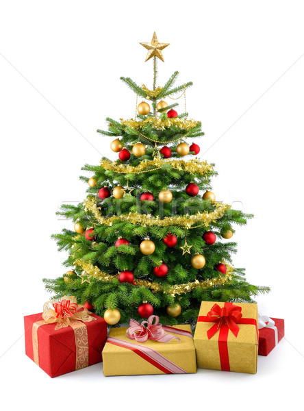Lush Christmas tree with gift boxes Stock photo © Smileus