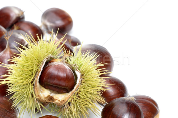 Fresh sweet chestnuts on pure white Stock photo © Smileus