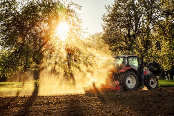 Tractor ploughing a field at sunset Stock photo © Smileus