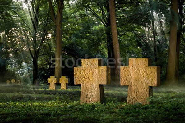 Cemetery in beautiful moody light Stock photo © Smileus