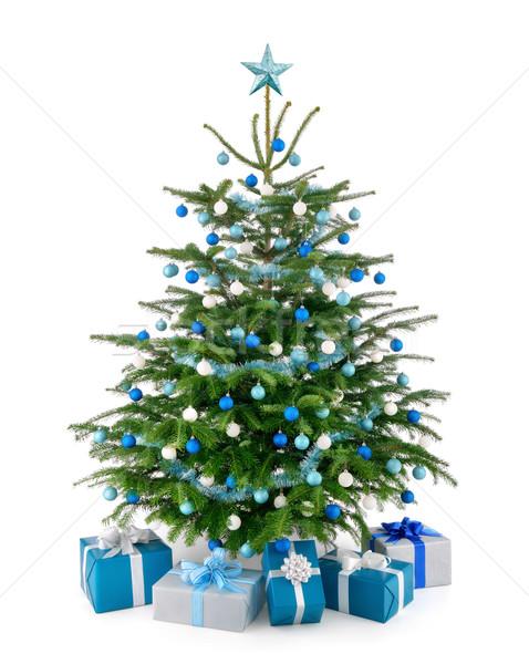 рождественская елка синий серебро Сток-фото © Smileus