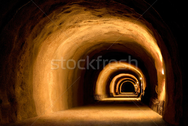 Visually dynamic tunnel construction Stock photo © Smileus