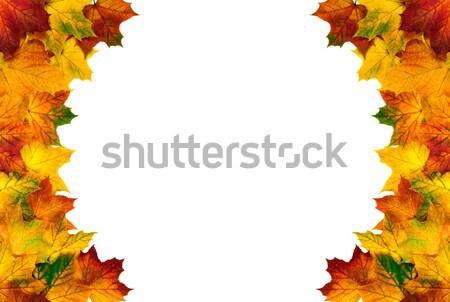 Round border composed of autumn leaves Stock photo © Smileus