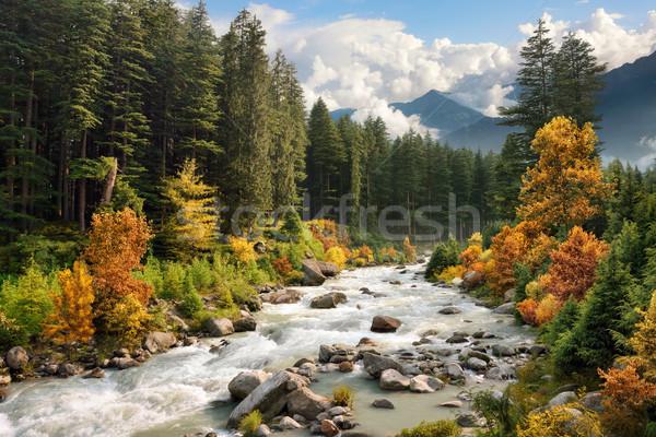 Colourful mountain landscape in autumn Stock photo © Smileus