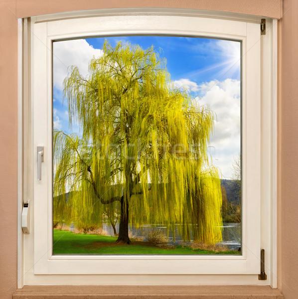 Pencere bahar manzara görmek güzel ağaç Stok fotoğraf © Smileus