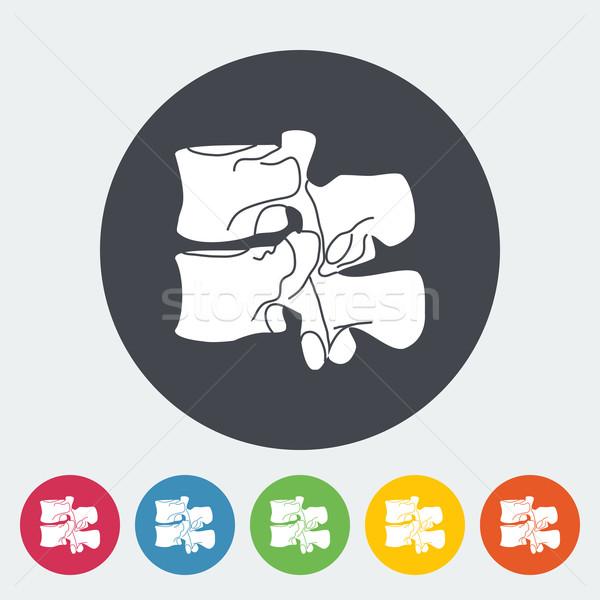 Anatomy spine icon. Stock photo © smoki