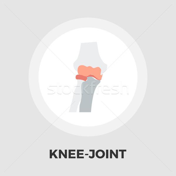 Knee-joint flat icon Stock photo © smoki