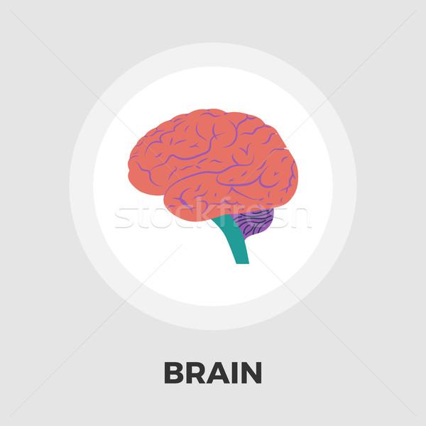 Cérebro ícone cérebro humano vetor isolado branco Foto stock © smoki