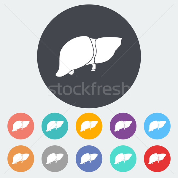 Liver icon. Stock photo © smoki