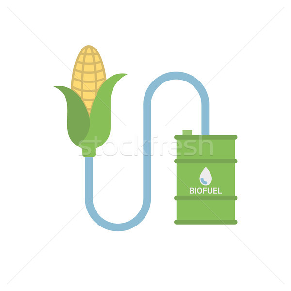 Biofuel - Biomass Ethanol, Made from Corn. Stock photo © smoki