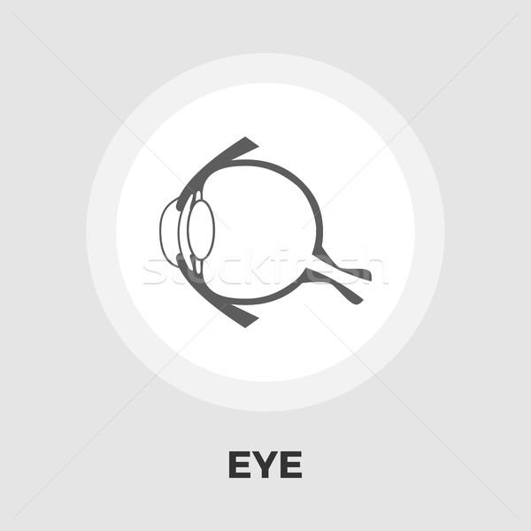 анатомии глаза икона вектора изолированный белый Сток-фото © smoki