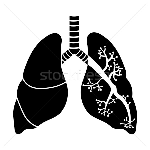 Feketefehér művészet gyógyszer tudomány grafikus mellkas Stock fotó © smoki