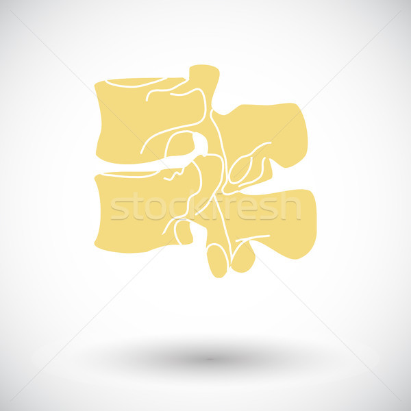 Anatomy spine icon. Stock photo © smoki