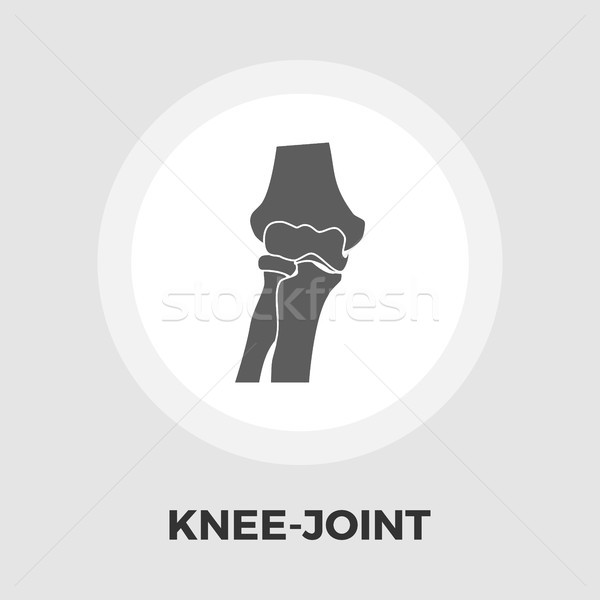 Knee-joint flat icon Stock photo © smoki