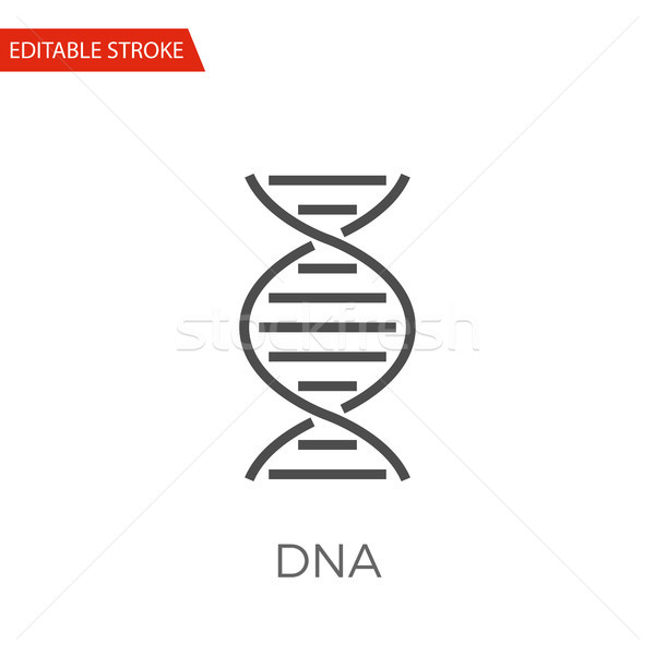 DNA Vector Icon Stock photo © smoki