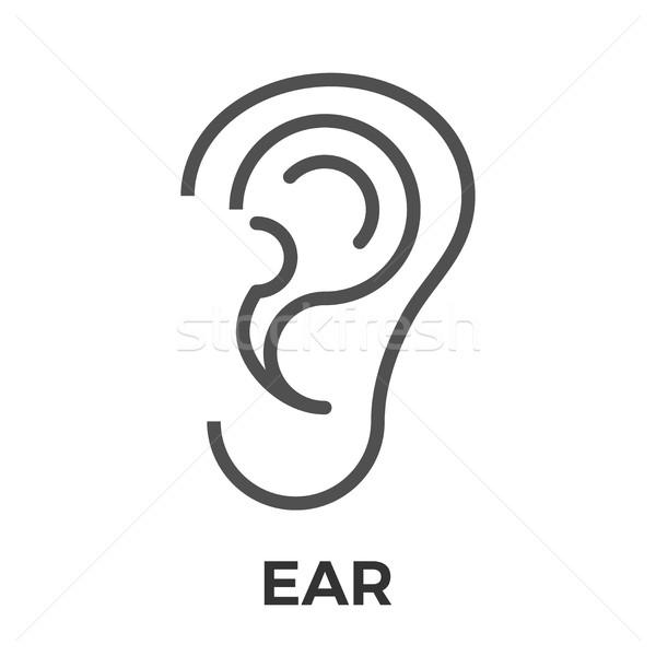 Ear thin line vector icon. Stock photo © smoki
