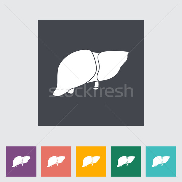 Liver flat icon. Stock photo © smoki