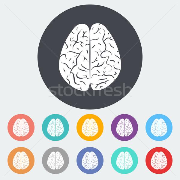 мозг икона круга тело дизайна Сток-фото © smoki