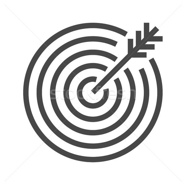 Target Thin Line Vector Icon Stock photo © smoki