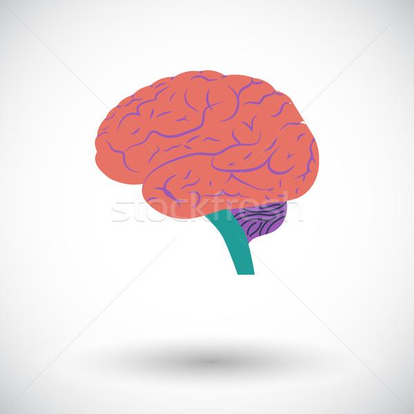 Agy emberi agy ikon fehér test terv Stock fotó © smoki