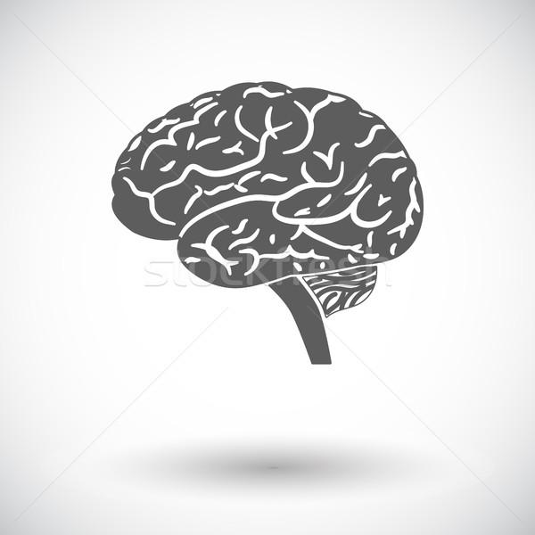 Brain. Stock photo © smoki