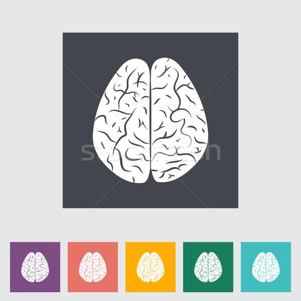 Agy emberi agy test terv művészet gyógyszer Stock fotó © smoki