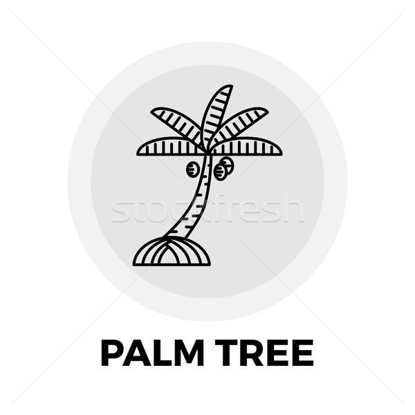 Palm Tree Line Icon Stock photo © smoki