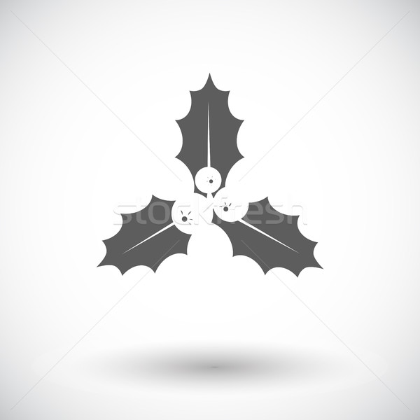 Holly berry flat icon Stock photo © smoki
