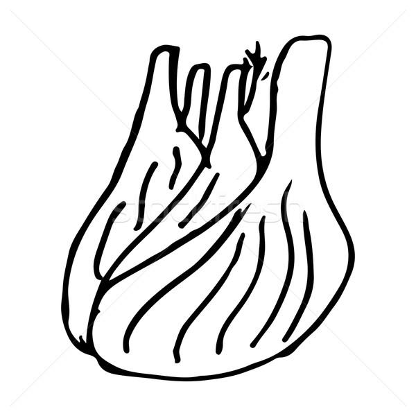 Rezene Doğa Boyama Salata Pişirme Grafik Vektör