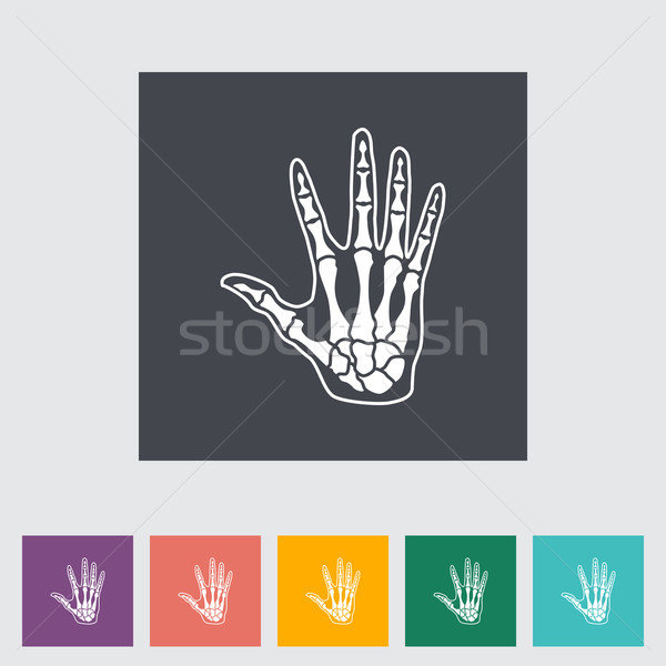 Anatomy hand Stock photo © smoki
