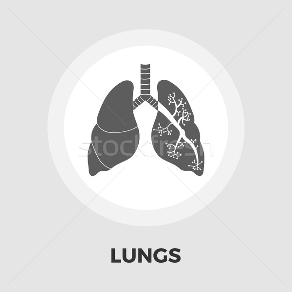 Stock photo: Lungs flat icon