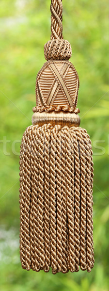 Curtain tassel Stock photo © smuay