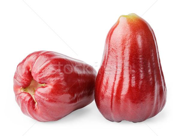 Piros rózsa alma közelkép thai izolált fehér Stock fotó © smuay