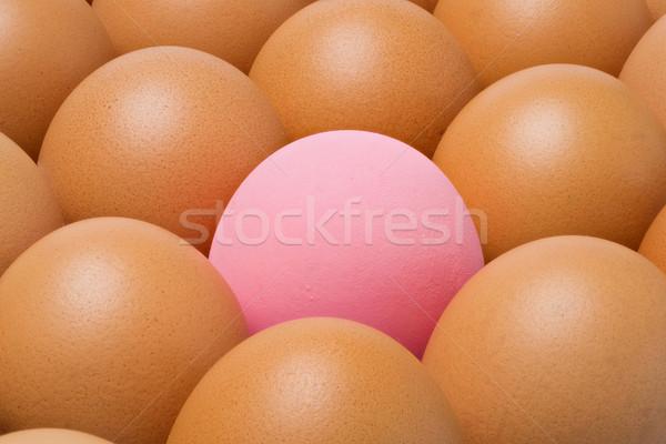 Century egg among chicken eggs Stock photo © smuay