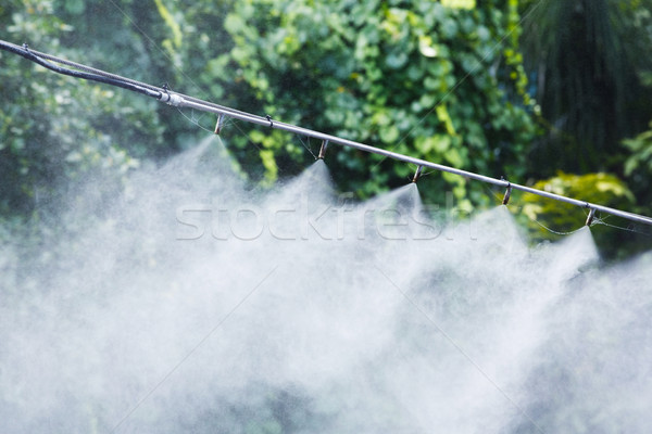 Mist nozzle water spraying system Stock photo © smuay