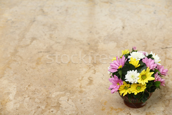Virág márvány asztal színes szeretet természet Stock fotó © smuay