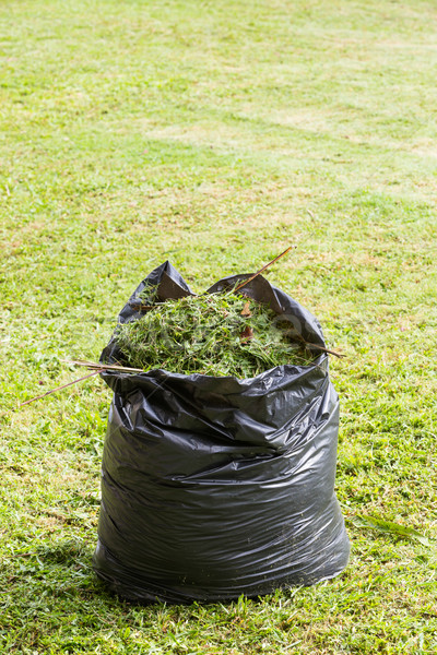 Grass in garbage bag Stock photo © smuay