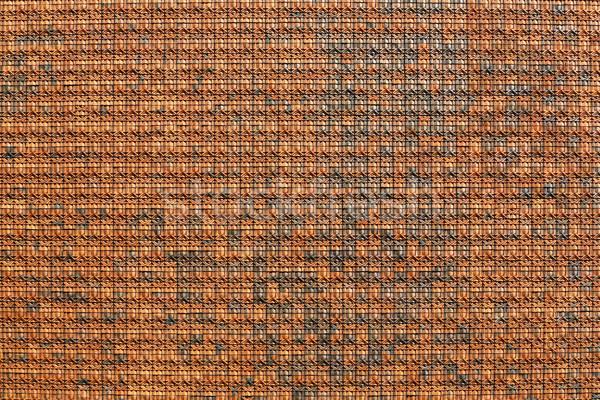 Earthenware wall tiles Stock photo © smuay