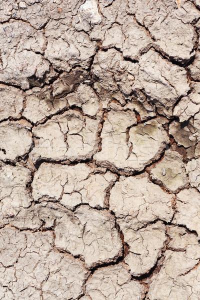 Foto stock: Secas · solo · rachado · terra · fundo · deserto
