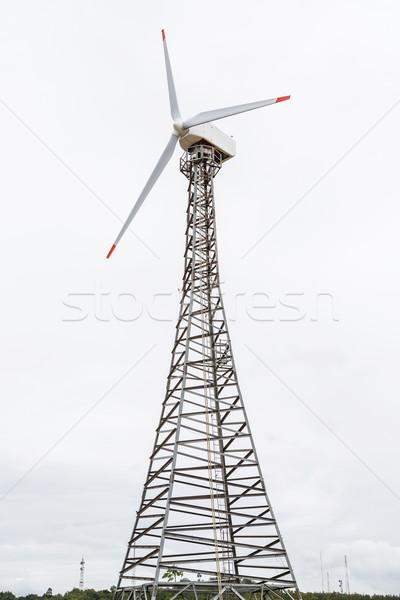 風力タービン 先頭 山 曇った 日 ツリー ストックフォト © smuay