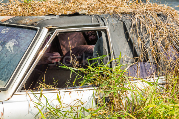 Car wreck in overgrown grasses Stock photo © smuay