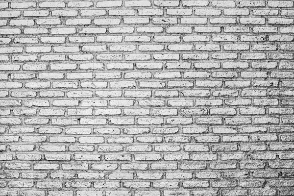 Silver brick wall Stock photo © smuay