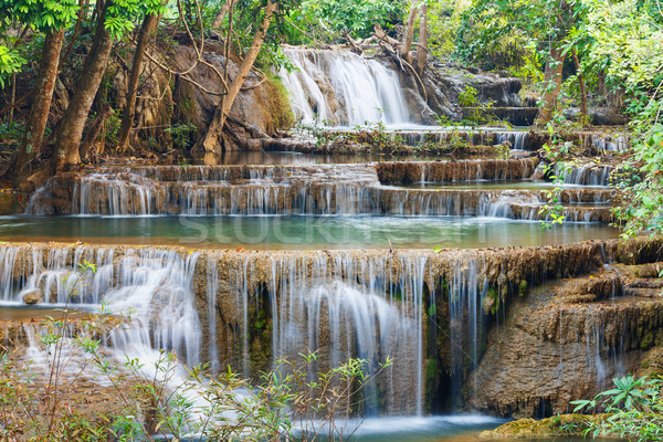 çağlayan park batı Tayland su ağaç Stok fotoğraf © smuay