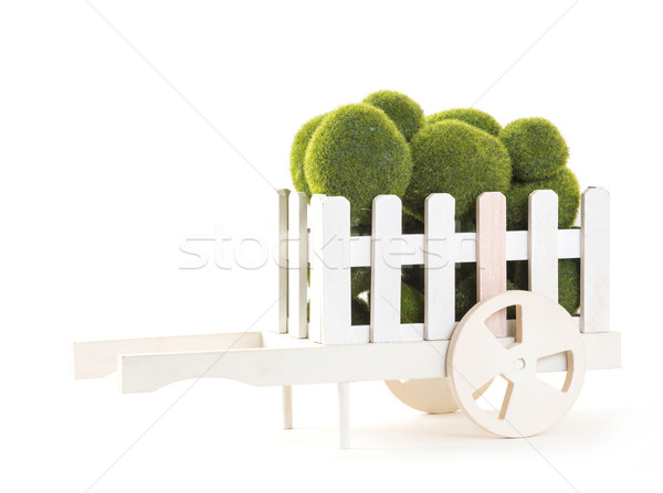 Green color Moss ball in wood cart Stock photo © smuay