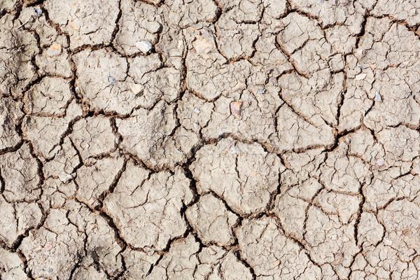 Foto stock: Secas · rachado · solo · terra · fundo · deserto