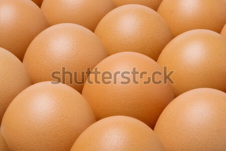 Chicken eggs in tray Stock photo © smuay